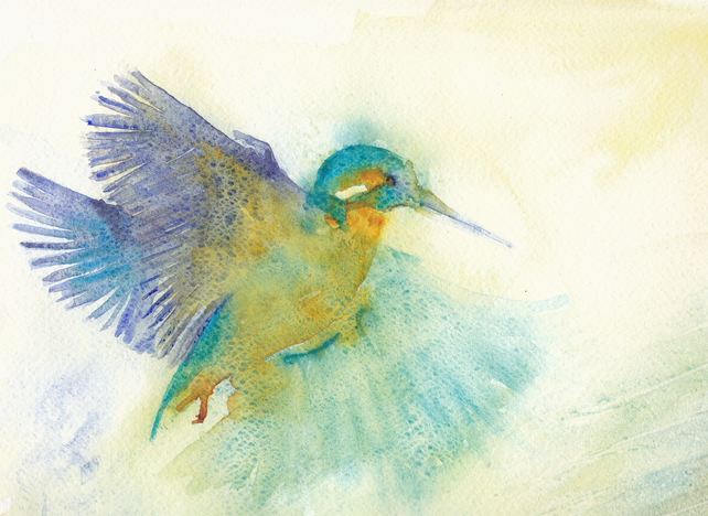 Greetings Card - Hovering Kingfisher - British Wildlife Series