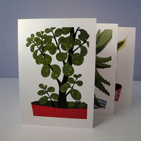 Botanical Cards - Reproduction  - Set of 3