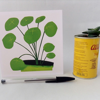 Pilea Peperomiodies Card