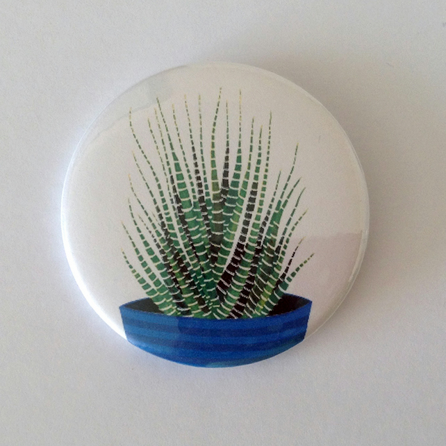 Haworthia Fasciata Badge