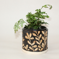 Black and White Botanical Plant Pot.