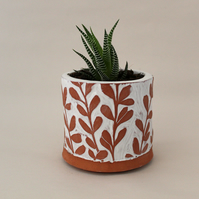 Terracotta and White Botanical Planters