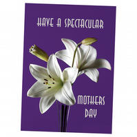 6 - MOTHERS DAY CARD