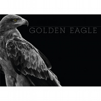 GOLDEN EAGLE BLACK & WHITE POSTER