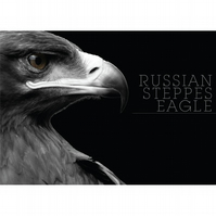 RUSSSIAN STEPPES EAGLE BLACK & WHITE POSTERS