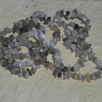 "34"" Strand of Botswana Agate Chips"