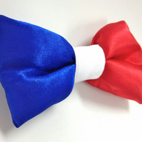 FRENCH FLAG BOW! TIE