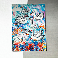 Swans Illustrated Postcard - Illustration - Bird Lovers - Small Art - Illustrate