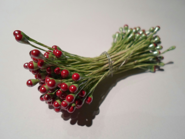 100 Flower stamens, Green stem with Burgundy head, double headed,