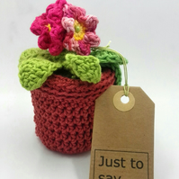 Small Crochet Pot Plant