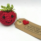 Crochet Romantic Tomato