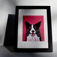 BORDER COLLIE DOG ON PINK- ORIGINAL LINOCUT FRAMED IN BLACK-FREE POSTAGE
