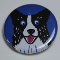 BLACK AND WHITE COLLIE DOG BLUE BADGE-POSTAGE FREE