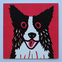 BORDER COLLIE DOG ON DARK PINK
