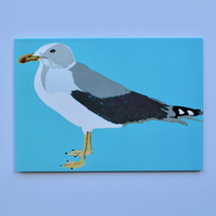 AQUA SEAGULL BLANK GREETINGS CARD