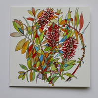 BOTTLEBRUSH BLANK GREETINGS CARD