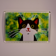 GREEN HAPPY CAT FRIDGE MAGNET-POSTAGE FREE