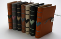 Recycled Leather Books