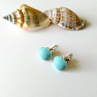 Resin Cockle Shell Earrings in Duck Egg Blue