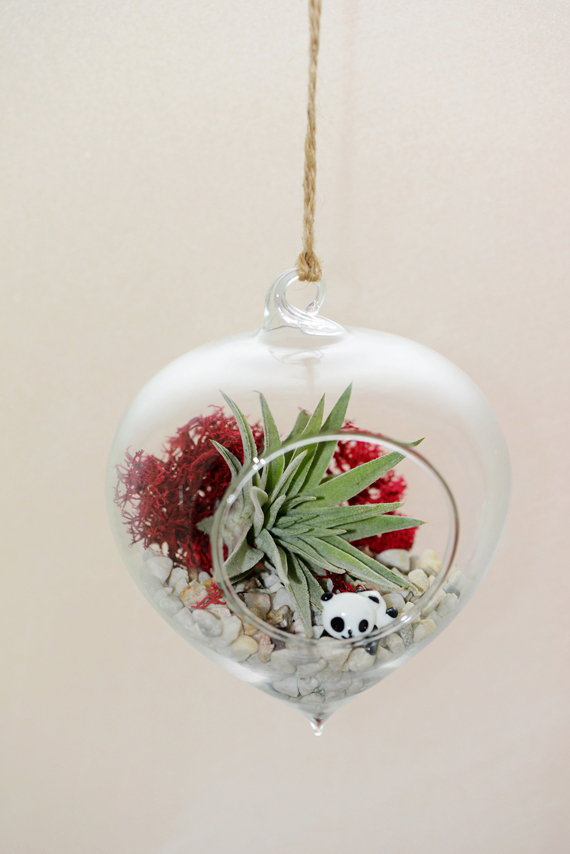 Heart Shaped Glass Hanging Terrarium with Air Plant
