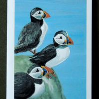 """Puffin"" - from an original painting - Blank Card"