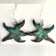 Enamel earrings - starfish: white and gold over turquoise