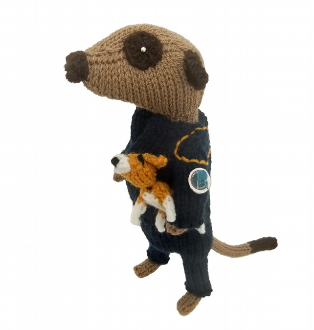 Archer Meerkat, Captain Archer Star Trek Meerkat