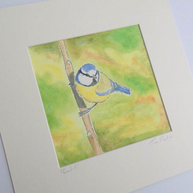 Mounted Print - 'Bluetit'