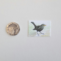 Miniature Watercolour Painting 'Blackbird' (2.5 cm x 3.5 cm)