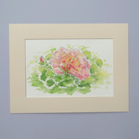 Original Watercolour Painting 'Pink Rose'