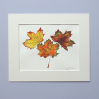 Original Watercolour Painting  'Autumn Leaves'