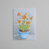 Original Watercolour ACEO 'Pot of Daffodils'