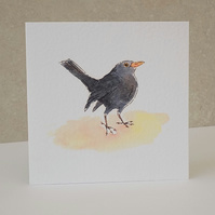 Blank Card 'Blackbird'