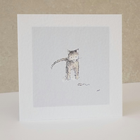 Cat blank greeting card