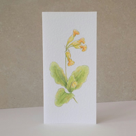 Wildflower Cowslip Blank Greeting Card