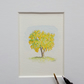 Miniature Watercolour Painting 'Laburnhum Tree'