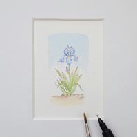 Miniature Watercolour Flower Painting  6 cm  x 3.5cm