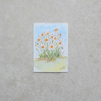 Watercolour ACEO - Daffodil Garden