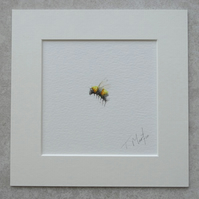 Original Watercolour Illustration 'Bumble Bee'