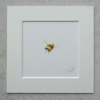 Original Watercolour Illustration 'Flying Bumble bee'