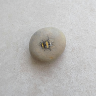 Painted Stone 'Bumble Bee'
