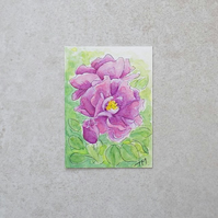 Original Watercolour ACEO  'Rose'