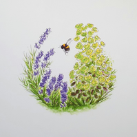 Nature Art Print 'Lavender Bee'