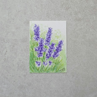 Original Watercolour ACEO  'Lavender'