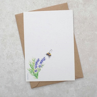 Eco Friendly Lavender Bee Postcards (pack of 6)