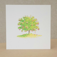 Blank Eco Friendly Card Apple Tree