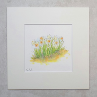 Original Watercolour Illustration 'Daffodil Garden'