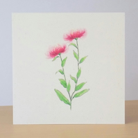 Wildflower Blank Card 'Knapweed'