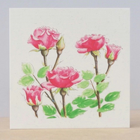 Ecofriendly Blank Card Pink Roses