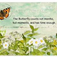 Butterfly Moments with Flowers Greeting Card